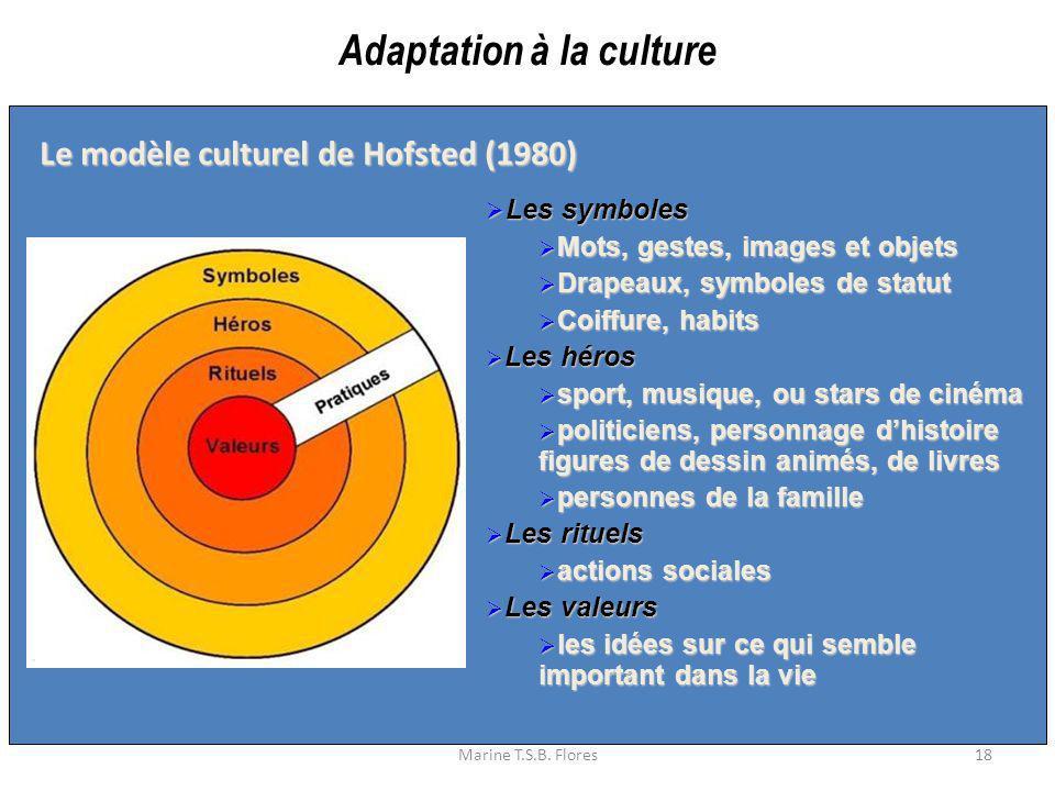 Adaptation à la culture