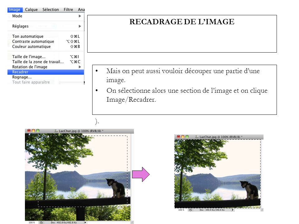 RECADRAGE DE L'IMAGE Mais on peut aussi vouloir découper une partie d'une image.