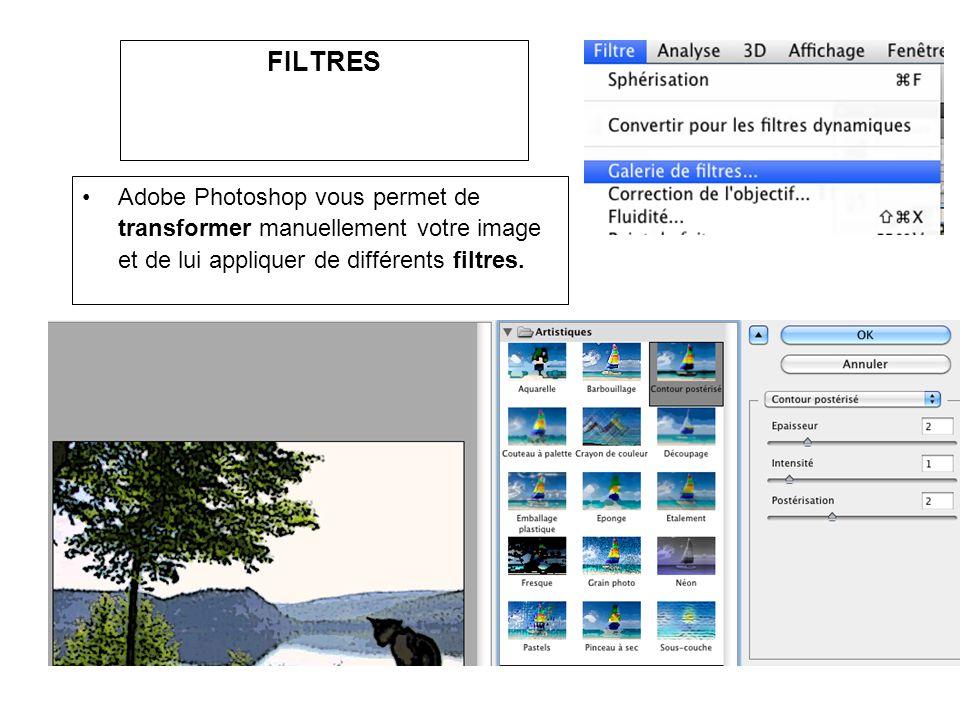 FILTRES Adobe Photoshop vous permet de transformer manuellement votre image et de lui appliquer de différents filtres.