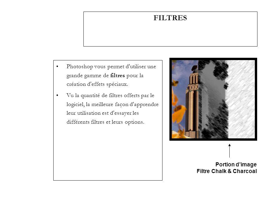 FILTRES Photoshop vous permet d utiliser une grande gamme de filtres pour la création d effets spéciaux.