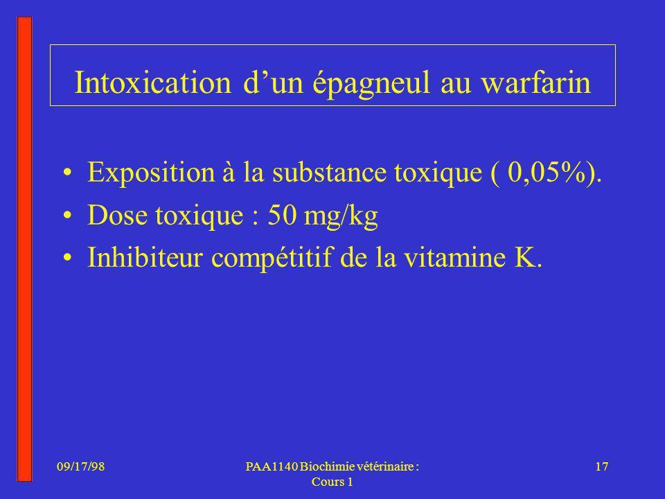 Intoxication d'un épagneul au warfarin