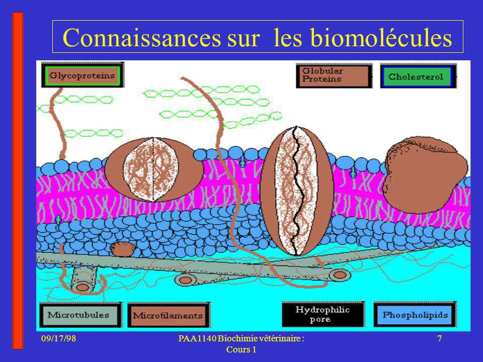 Connaissances sur les biomolécules