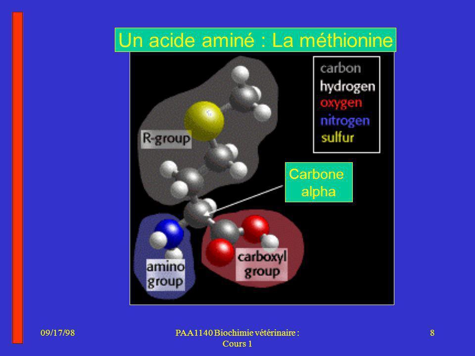 Un acide aminé : La méthionine