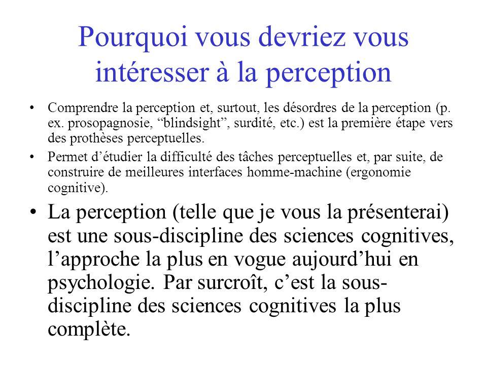 Pourquoi vous devriez vous intéresser à la perception