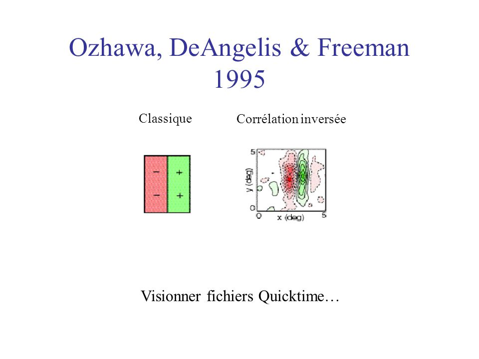 Ozhawa, DeAngelis & Freeman 1995