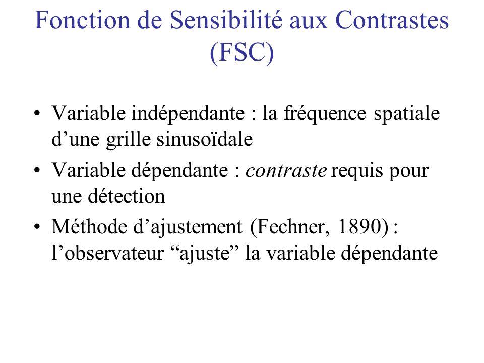 Fonction de Sensibilité aux Contrastes (FSC)