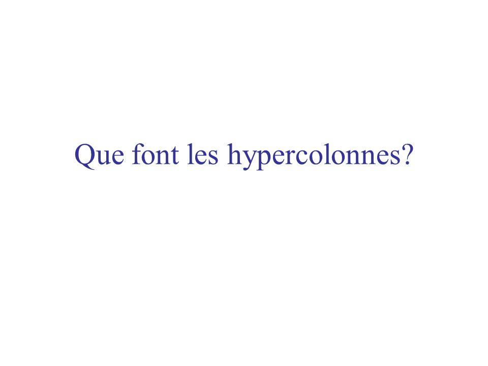Que font les hypercolonnes