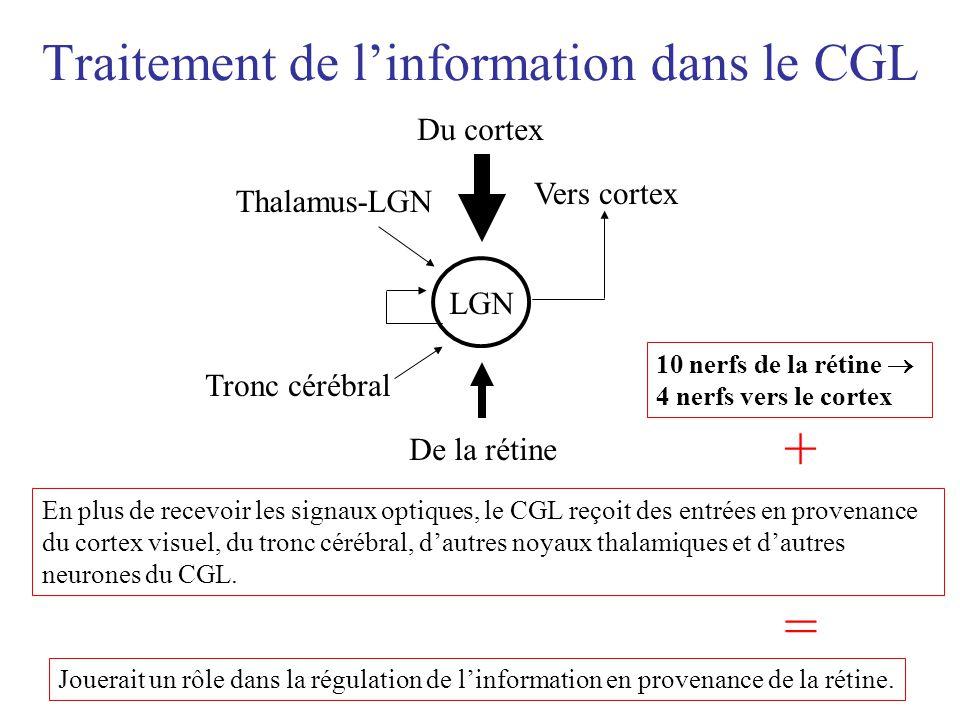 Traitement de l'information dans le CGL