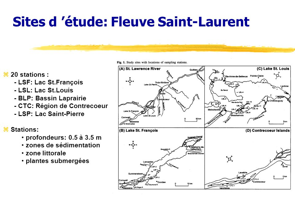 Sites d 'étude: Fleuve Saint-Laurent