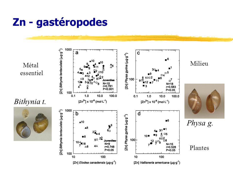Zn - gastéropodes Milieu Métal essentiel Bithynia t. Physa g. Plantes