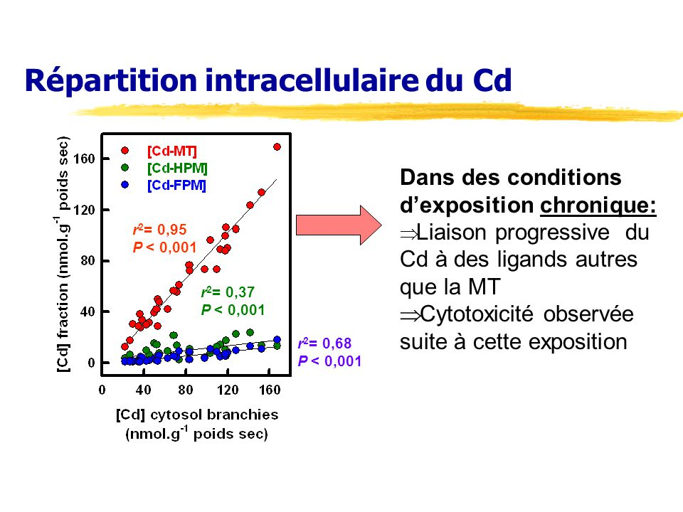 Répartition intracellulaire du Cd