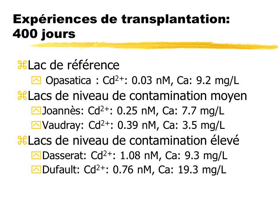 Expériences de transplantation: 400 jours