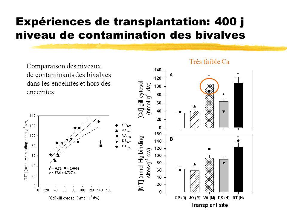 Expériences de transplantation: 400 j niveau de contamination des bivalves