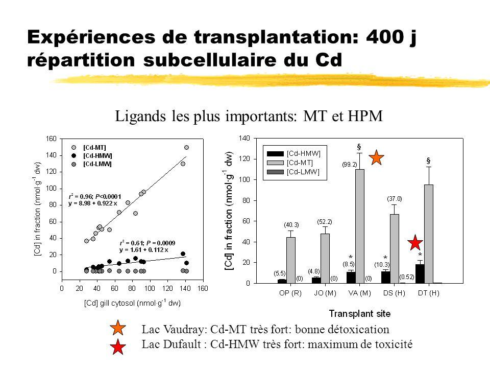 Expériences de transplantation: 400 j répartition subcellulaire du Cd