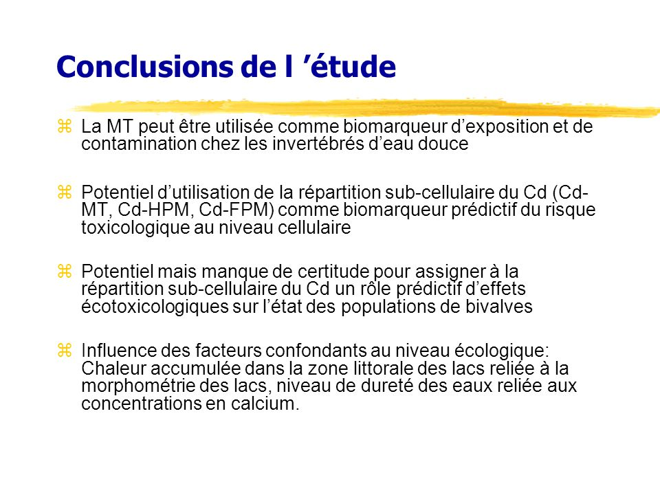 Conclusions de l 'étude