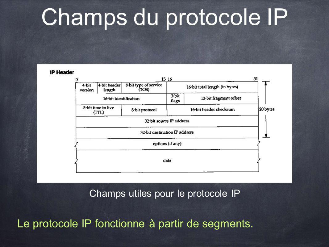 Champs utiles pour le protocole IP