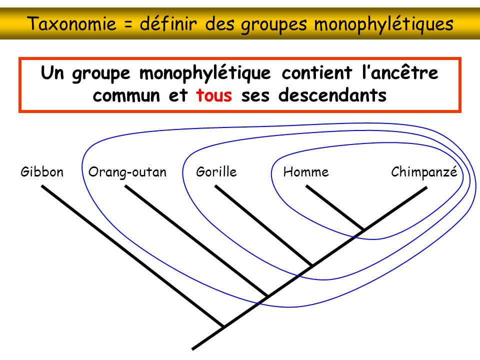 Taxonomie = définir des groupes monophylétiques
