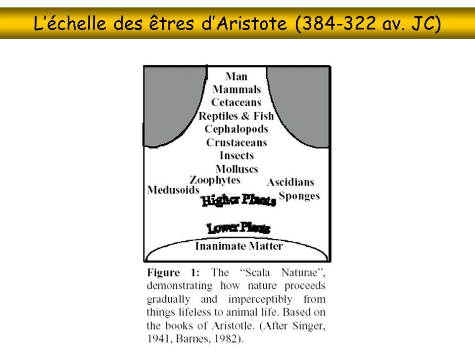 L'échelle des êtres d'Aristote (384-322 av. JC)