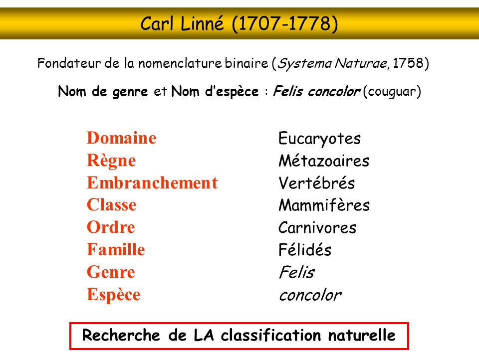 Recherche de LA classification naturelle