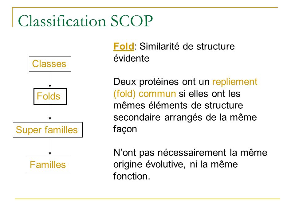 Classification SCOP Fold: Similarité de structure évidente Classes