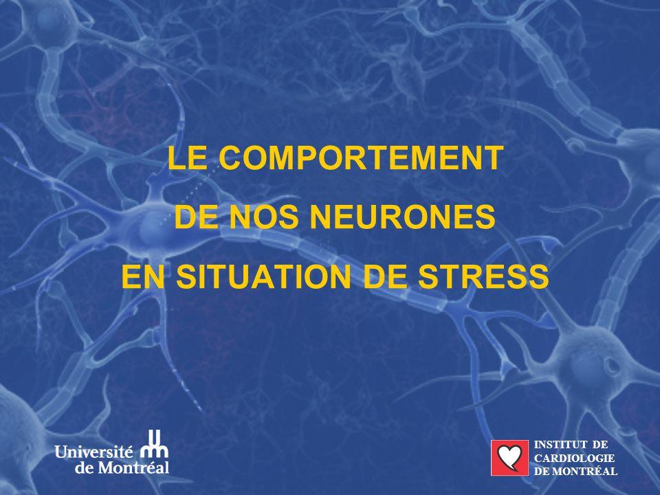 LE COMPORTEMENT DE NOS NEURONES EN SITUATION DE STRESS