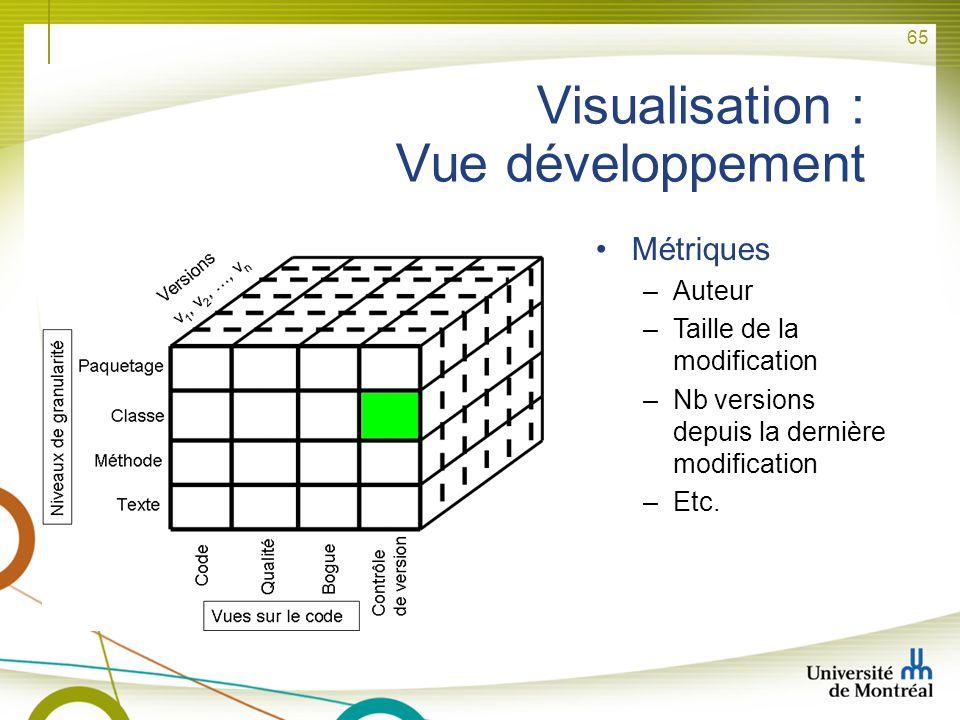 Visualisation : Vue développement