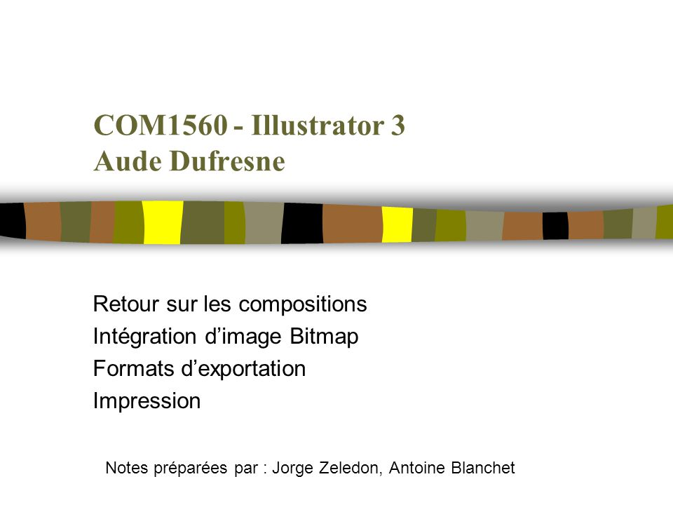 COM1560 - Illustrator 3 Aude Dufresne