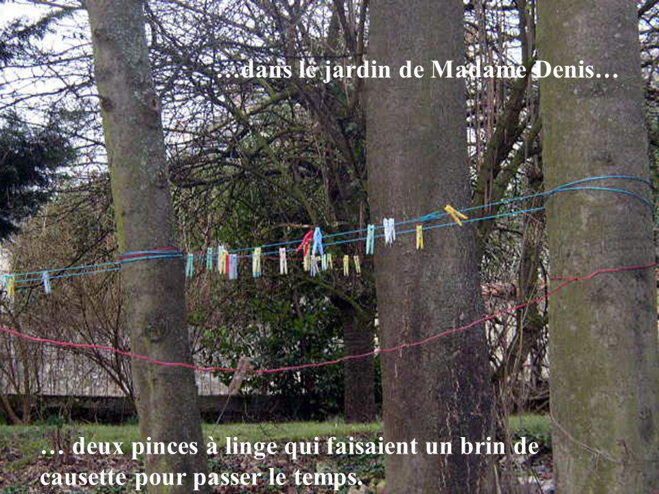 …dans le jardin de Madame Denis…