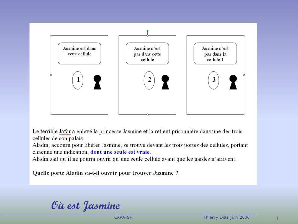 CAPA-SH Thierry Dias juin 2006