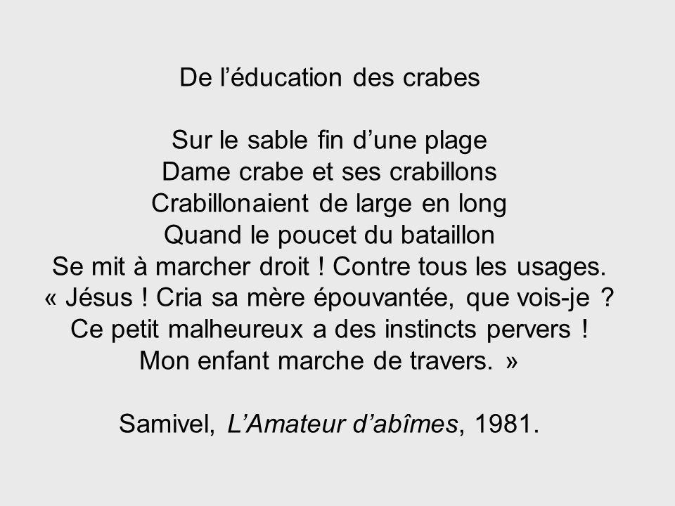 De l'éducation des crabes Sur le sable fin d'une plage