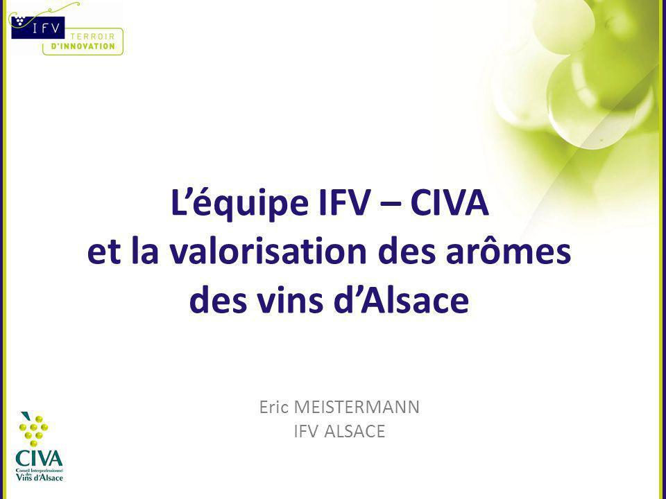 L'équipe IFV – CIVA et la valorisation des arômes des vins d'Alsace