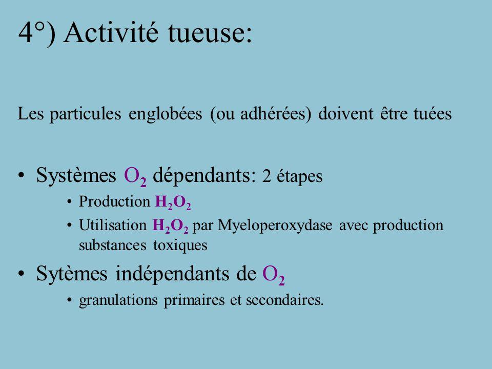 4°) Activité tueuse: Systèmes O2 dépendants: 2 étapes