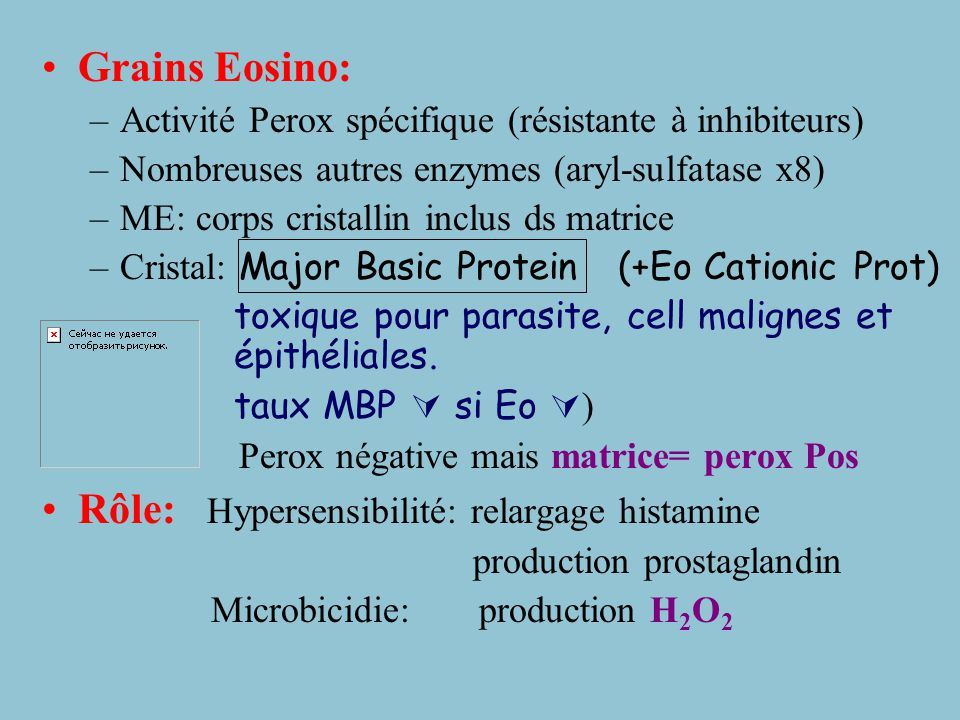 Rôle: Hypersensibilité: relargage histamine