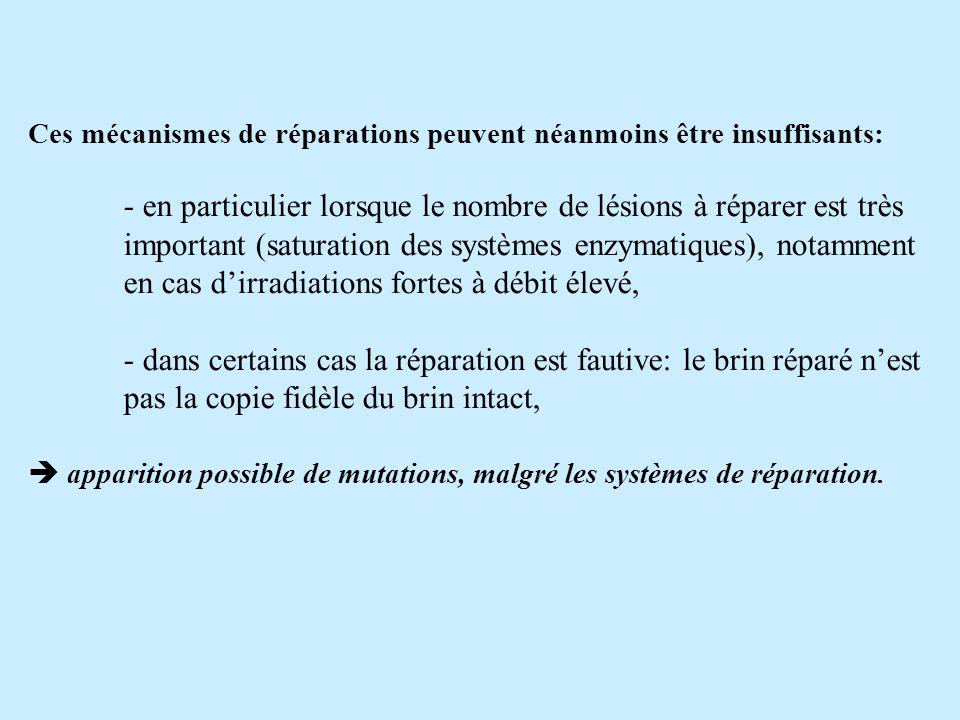 Ces mécanismes de réparations peuvent néanmoins être insuffisants:
