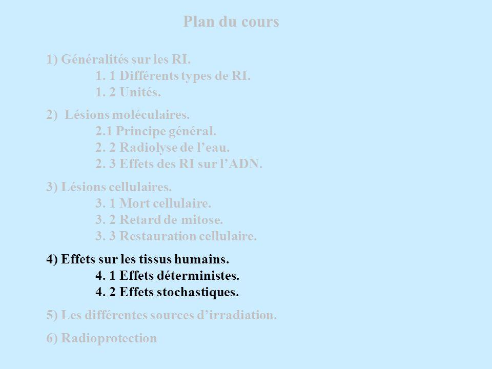 Plan du cours 1) Généralités sur les RI. 1. 1 Différents types de RI.