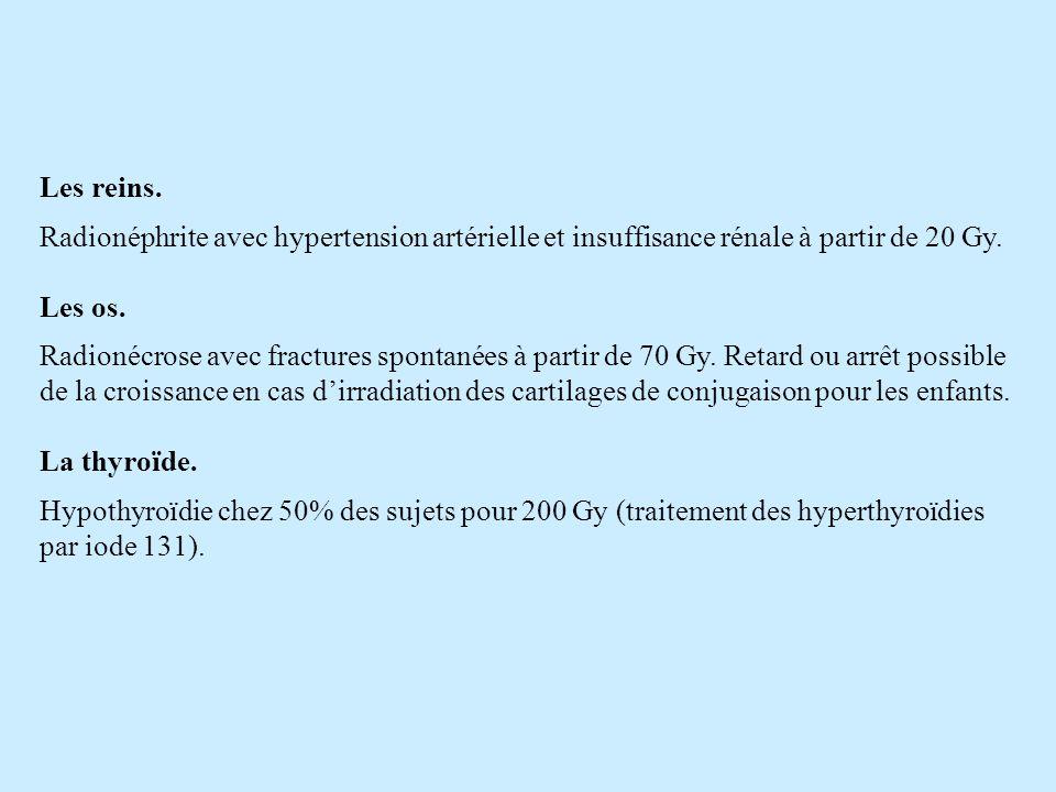 Les reins. Radionéphrite avec hypertension artérielle et insuffisance rénale à partir de 20 Gy. Les os.