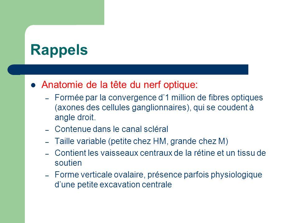 Rappels Anatomie de la tête du nerf optique: