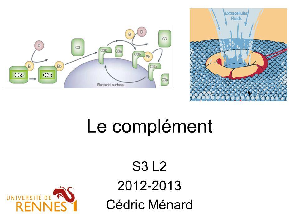 C3b C3b Le complément S3 L2 2012-2013 Cédric Ménard 1