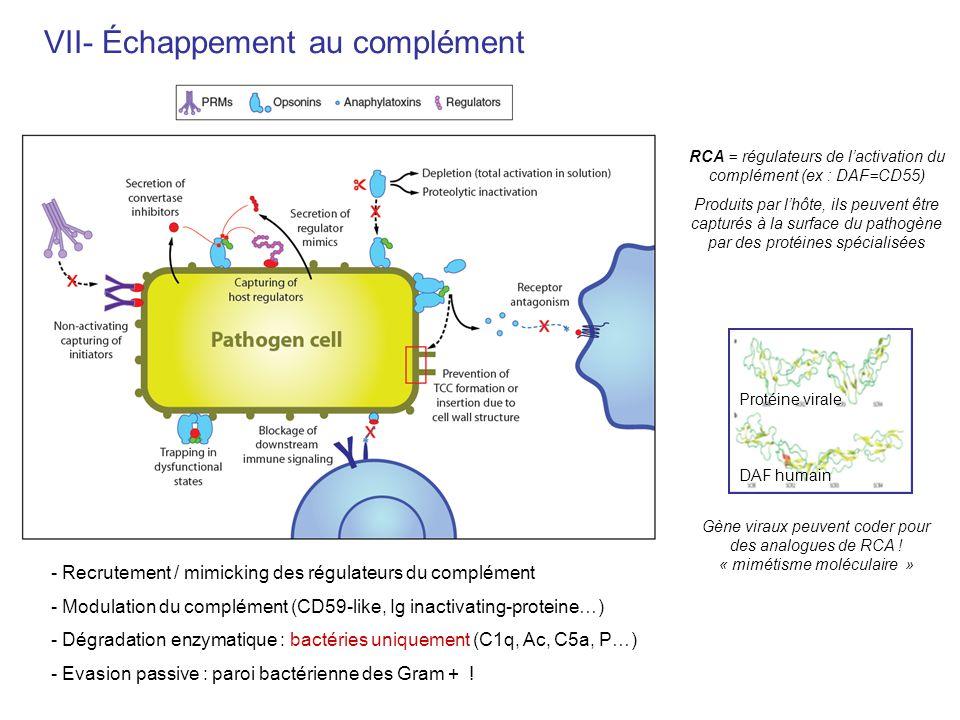 RCA = régulateurs de l'activation du complément (ex : DAF=CD55)