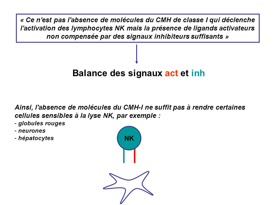 Balance des signaux act et inh