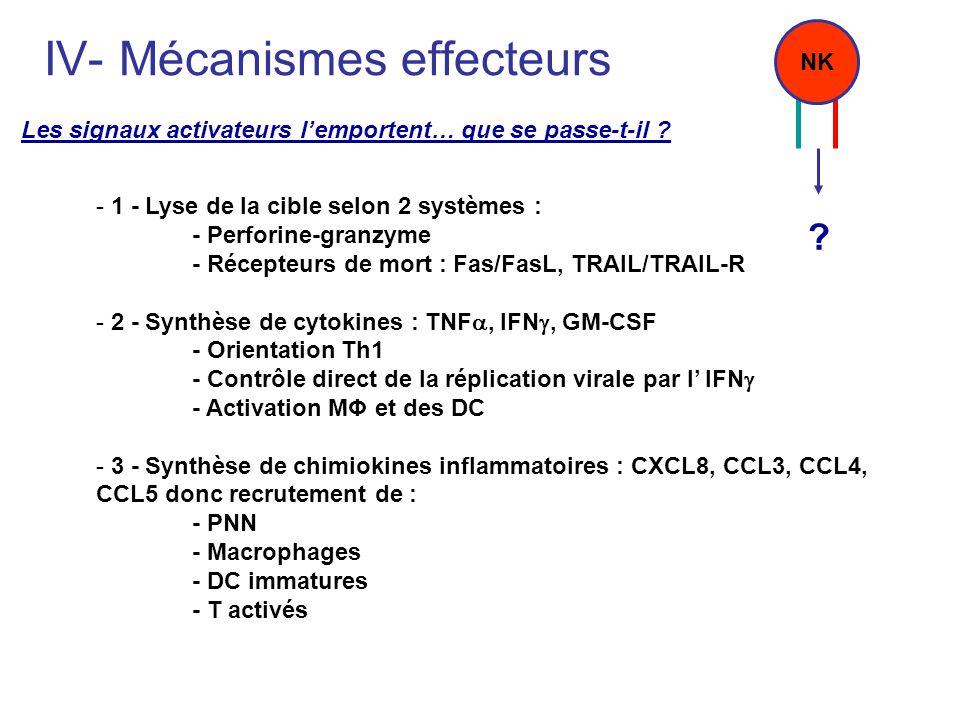 IV- Mécanismes effecteurs