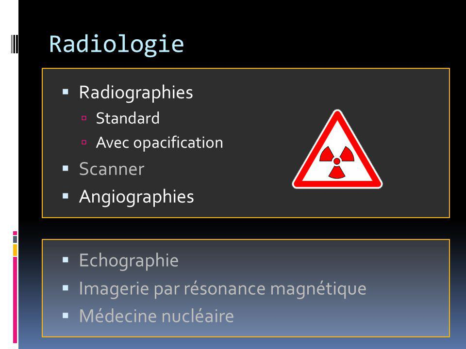 Radiologie Radiographies Scanner Angiographies Echographie