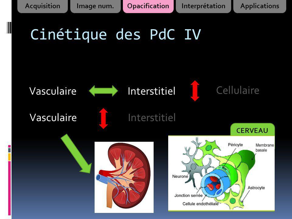 Cinétique des PdC IV Vasculaire Interstitiel Cellulaire Vasculaire