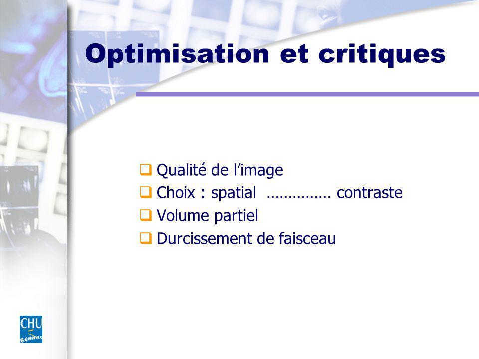 Optimisation et critiques