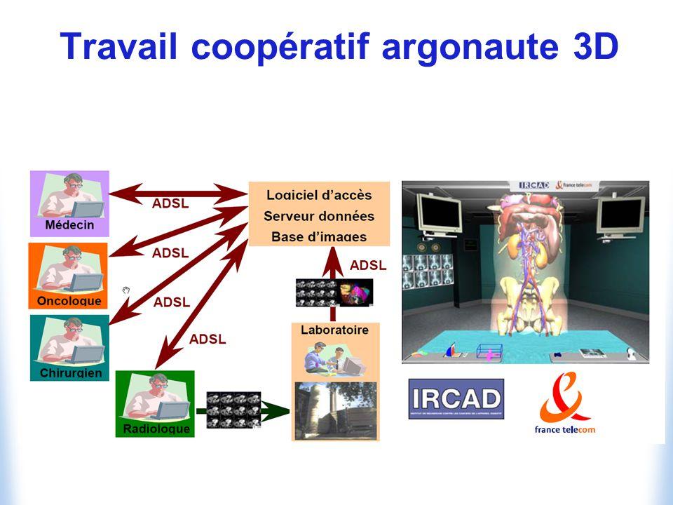 Travail coopératif argonaute 3D