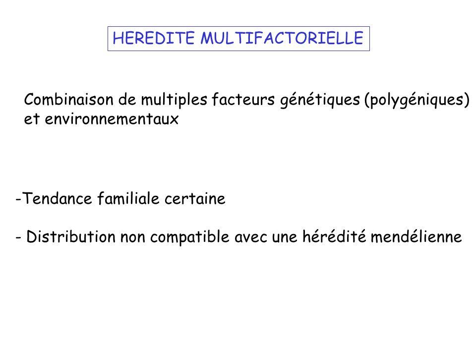 HEREDITE MULTIFACTORIELLE