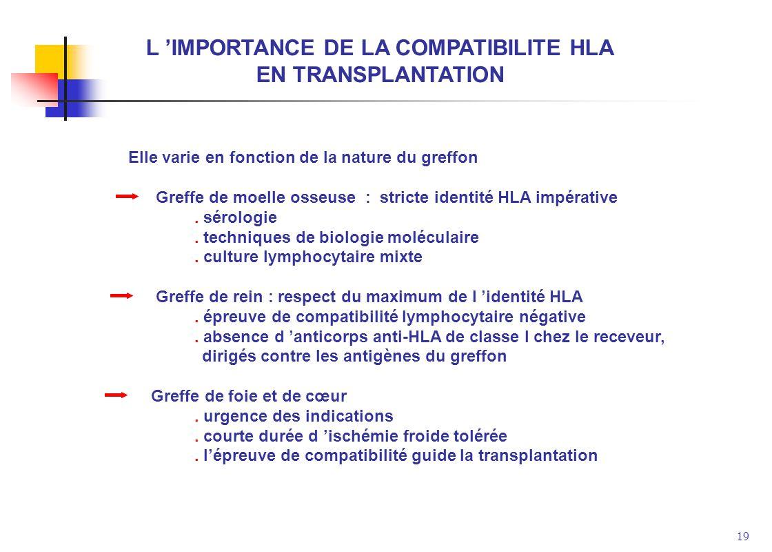 L 'IMPORTANCE DE LA COMPATIBILITE HLA
