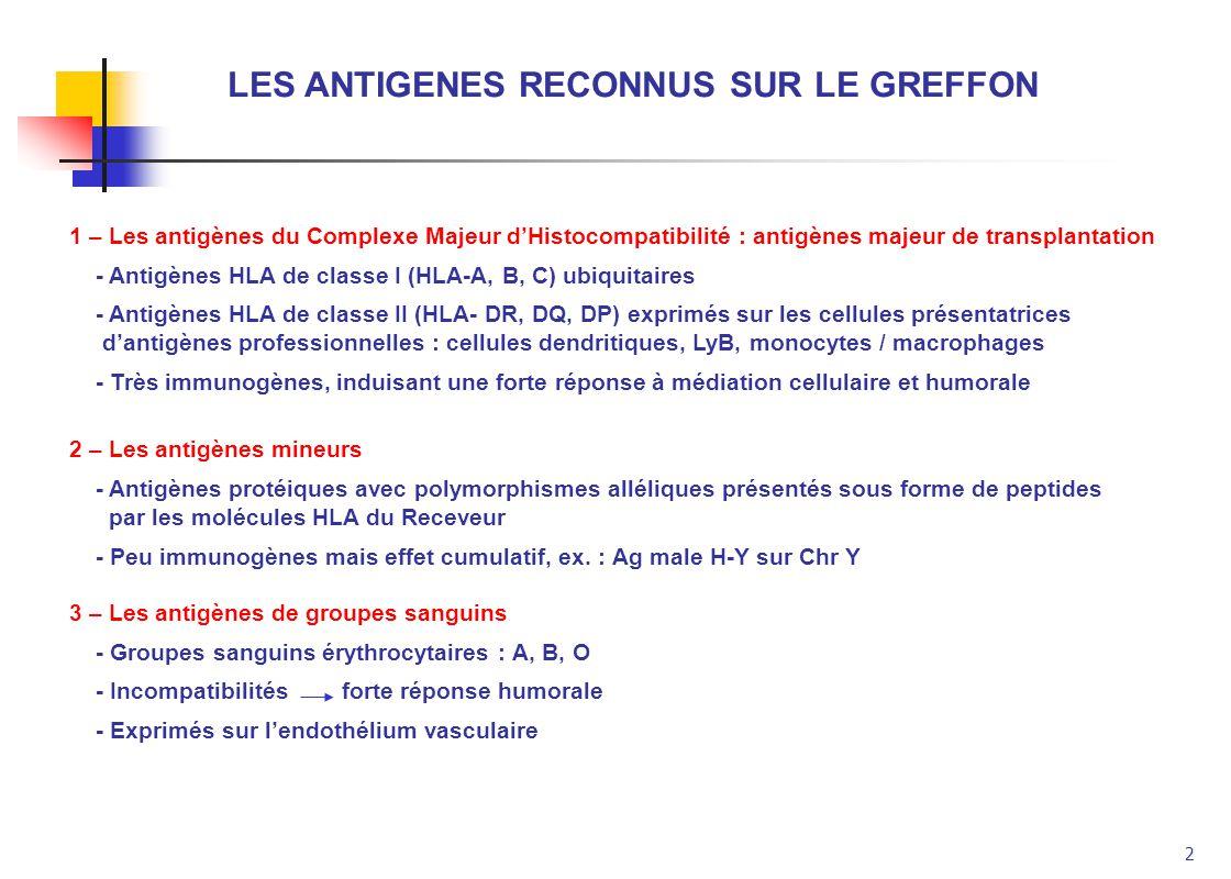 LES ANTIGENES RECONNUS SUR LE GREFFON