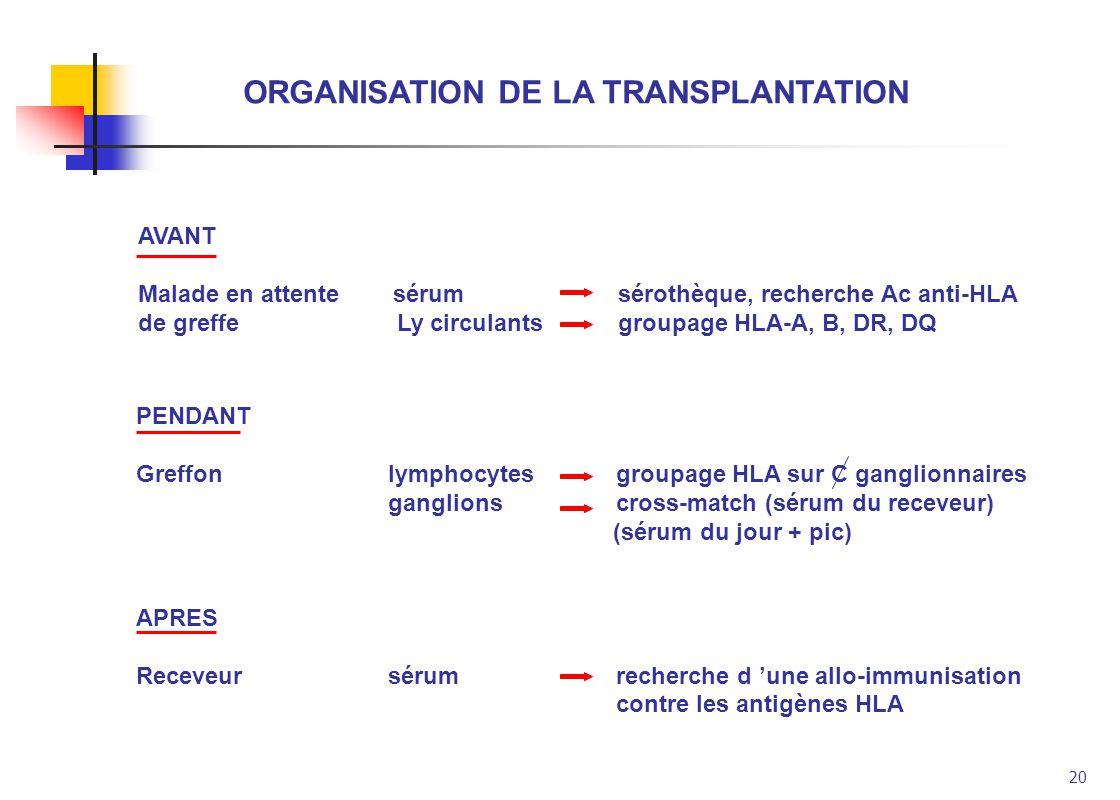 ORGANISATION DE LA TRANSPLANTATION