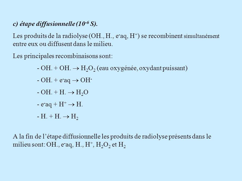 c) étape diffusionnelle (10-6 S).